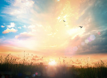 Abstract Meadow Autumn Sunrise Background