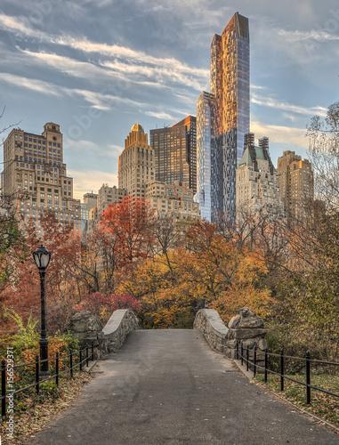 Gapstow bridge Central Park, New York City - 156529371