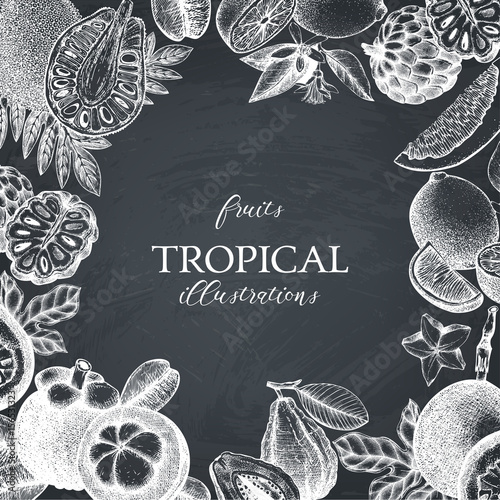 Vector tropical fruits design on chalkboard