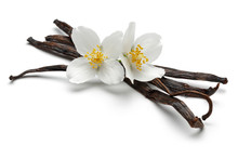 Vanilla Sticks With Flowers