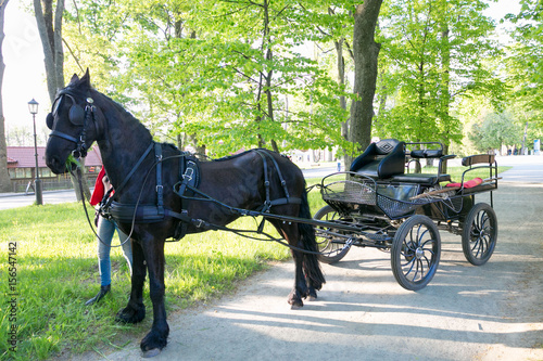 NESVIZH, BELARUS - May 20, 2017: a black carriage with a horse Canvas Print