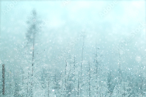 Poster Bleu clair Winter forest blurred background snow landscape