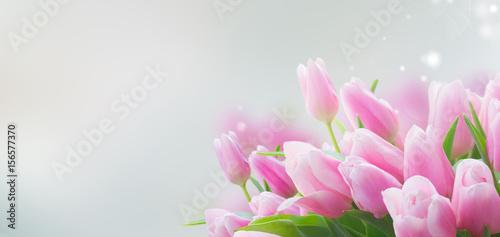 bukiet-rozowi-tulipany-zamyka-z-bliska-z-kopia