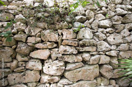 Mur de la cité Maya de Tulum Poster