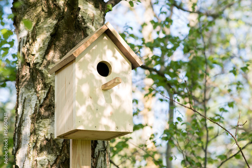Birdhouse on a birch tree, hand made Canvas Print