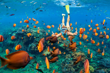 Happy Family - Girl In Snorkeling Mask Dive Underwater With Tropical Fishes In Coral Reef Sea Pool. Travel Lifestyle, Water Sport Outdoor Adventure, Swimming Lessons On Summer Beach Holiday With Child