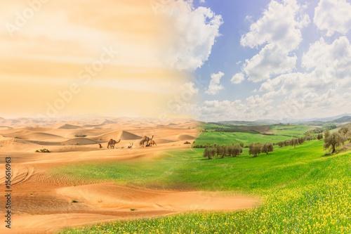 Slika na platnu Climate change with desertification process