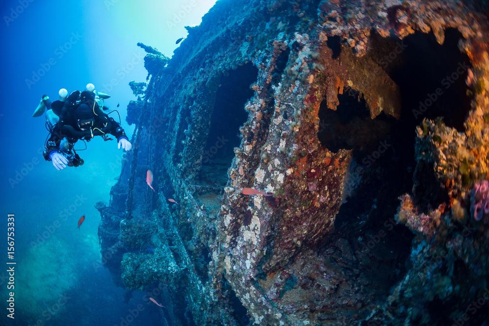 Fototapeta Diving on the wreck