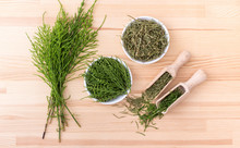 Field Horsetail / Fresh And Dr...