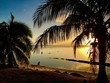 Beautiful white sanded beach and palm trees in the early sunset, Moorea, Tahiti, French Polynesia