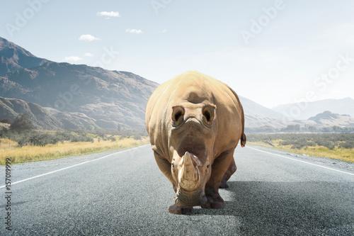Poster Rhino Heavy duty transport. Mixed media
