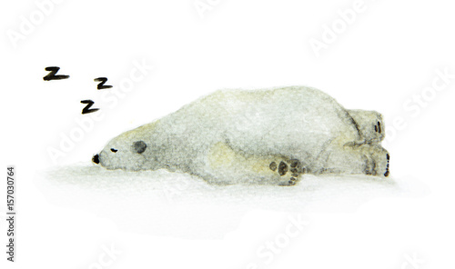 Hand painted watercolor polar bear. Cute sleeping animal design - Sleeping white bear.