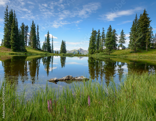 Fotografie, Obraz  Reflecting Pond
