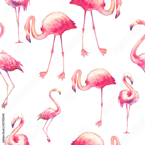Foto op Aluminium Flamingo vogel Watercolor flamingo seamless pattern. Hand painted texture with bright exotic birds on white background. Fashion wallpaper design with wild animals