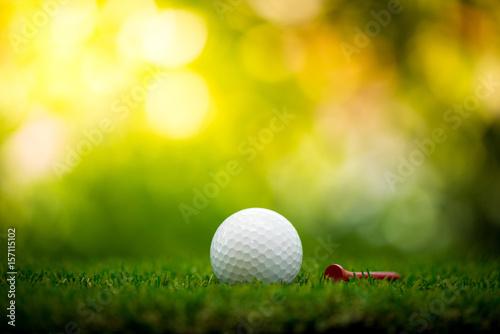 Deurstickers Golf golf ball with tee on fairway