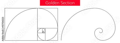 Fotografía  golden section ration template