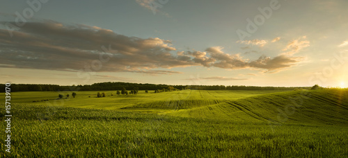 Foto auf Gartenposter Landschappen Panoramic view of empty grass field at the sunset with copy space