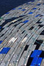 Commercial Lobster Storage Pens