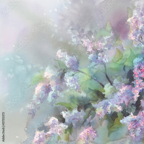 Fototapety, obrazy: lilac flower watercolor