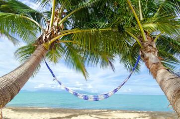 Fototapeta Karibischer Traumurlaub, Auszeit, Entspannung: Relaxen in Hängematte unter Palmen :)