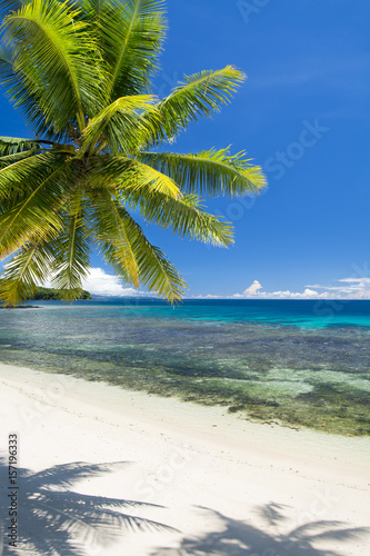 White tropical beach