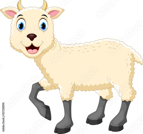Fotobehang Boerderij Vector illustration of cute sheep cartoon isolated on white background