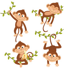 Set Of Isolated Monkey Hanging...