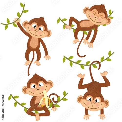 Naklejka premium zestaw na białym tle małpa wiszące na winorośli - ilustracja wektorowa eps