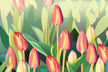 FototapetaRed tulip flowers Spring season invitation background. Vector illustration