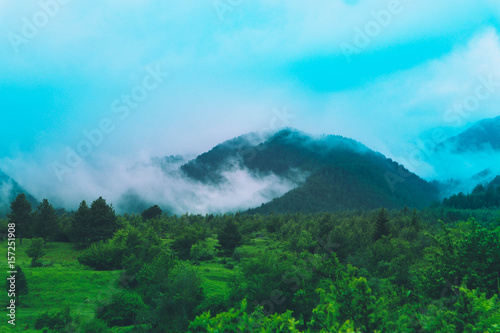 Foto op Plexiglas Turkoois Photo depicting beautiful a foggy mystic mountains. Fog clouds at the pine tree mystical woods, morning. Europe, mysterious alps landscape.