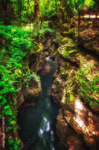 Foto auf Gartenposter Reflexion Martvili canyon in Georgia. Beautiful natural canyon with mountain river