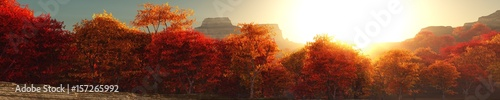 Garden Poster Brown Panorama of autumn landscape, autumn trees at sunset