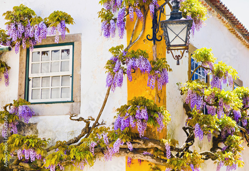 Fototapety, obrazy: Colorful house facade with flowers, Portugal