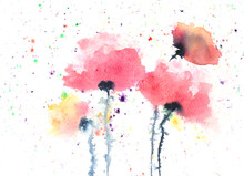 Abstract Poppy Flowers Painting, Watercolor Painting In Impressionism Style