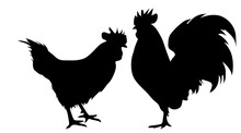 Vector Silhouette Of Rooster H...