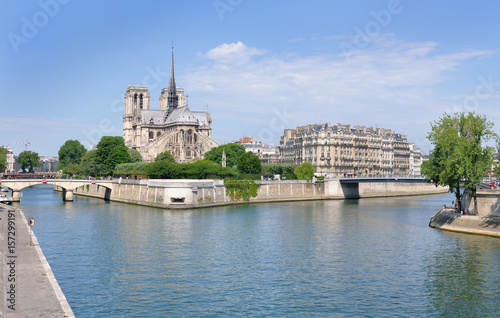 Staande foto Parijs cathédrale et immeuble parisien au bords de la Seine