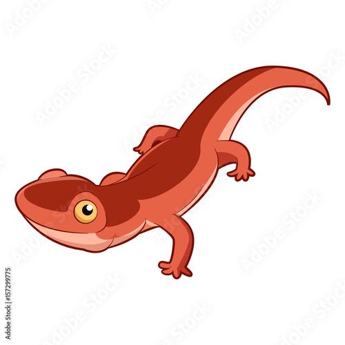 Fototapeta Cartoon smiling Newt