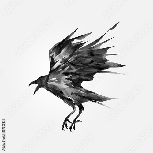 Recess Fitting Dragons drawn isolated flying black crow
