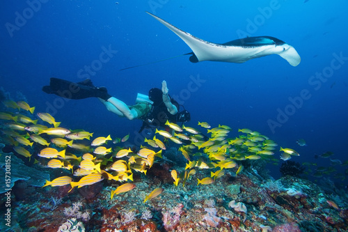 Spoed Foto op Canvas Duiken Diver swims with manta ray