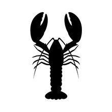 Graphic Lobster, Vector