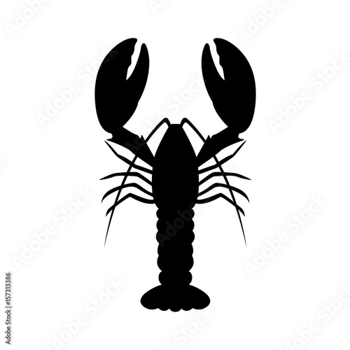 graphic lobster, vector Canvas Print