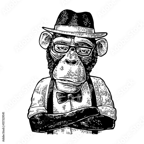 Fotografia Monkey hipster with arms crossedin in hat, shirt, glasses and bow tie