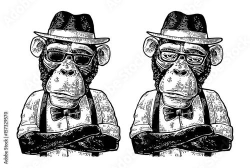 hipster-malpa-z-rekami-crossedin-w-kapelusz-koszula-okulary