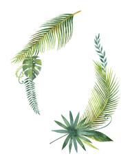 fototapeta liście palmy i gałęzi