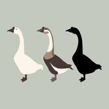Goose Vector Illustration Styl...