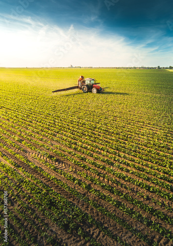 Tractor spraying soybean field at spring Canvas Print
