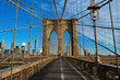 The Brooklyn Bridge and Skyline of New York City at a sunny morning II