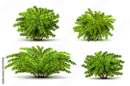 Obraz na plátně Shrubbery, 3d isometric bushes isolated on white vector set