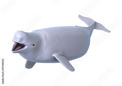 Photo 3D Rendering Beluga White Whale on White