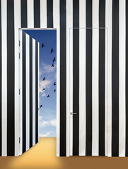 FototapetaModern interior with a wall in black and white stripes. Invisible doors and one open door overlooking the sky with birds and light clouds.